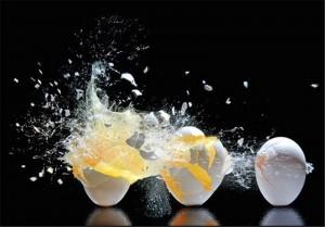 بحران تخم مرغهای آلوده به فرانسه رسید