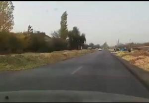 سیبهای که دریاچه ارومیه را خشک کرد در کف جاده +فیلم / واکنش جهاد کشاورزی و اشکهای نماینده اومیه